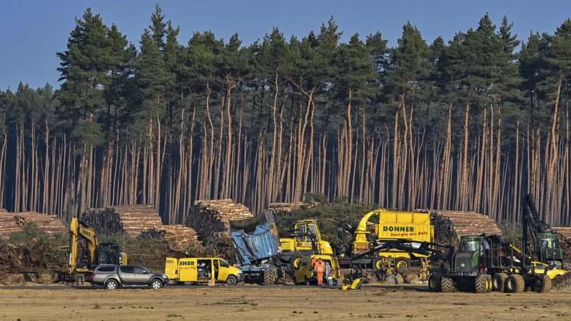 Nemački sud potvrdio da proizvođač automobila Tesla mora da obustavi seču drveća 1