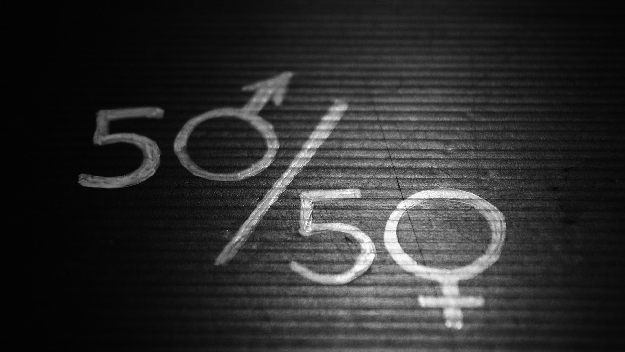 Ekonomska zavisnost žena glavni uzrok rodne neravnopravnosti 2