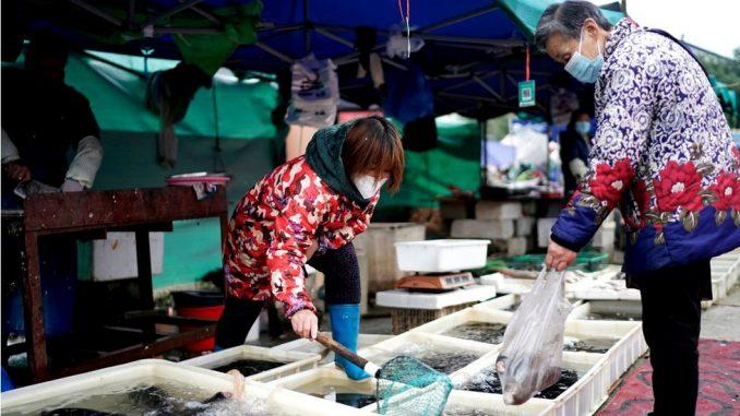 Korona virus i Kina: Stručnjaci SZO stigli u Vuhan - prvo karantin, pa istraga 4