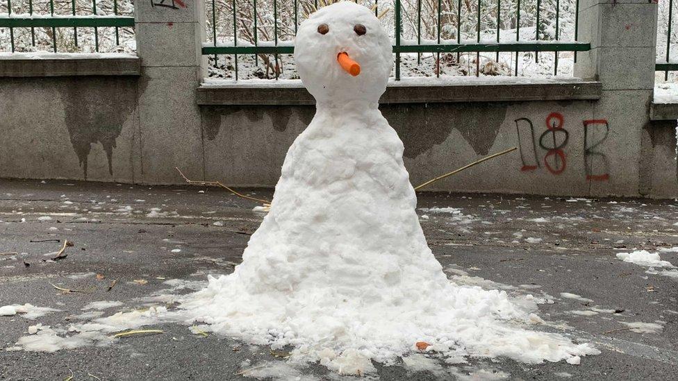 Sneško