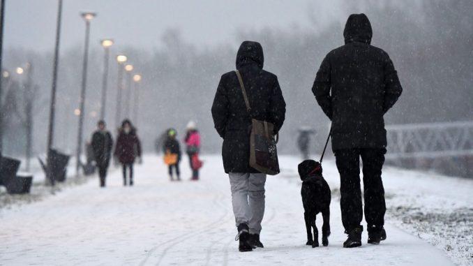Desetostruko manje obolelih u Vojvodini 4