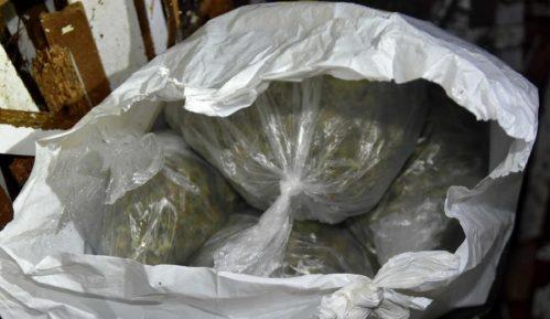 U Kaluđerici zaplenjeno oko kilogram marihuane, uhapšeno jedno lice 7
