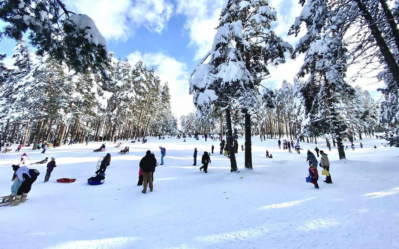 Na Zlatiboru, tokom zimskog raspusta, boravilo dnevno 30.000 gostiju 2