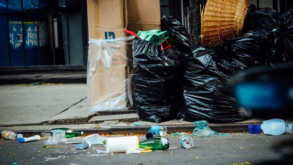 Gradska čistoća: Tokom Exita prikupljeno 33 tone smeća 1