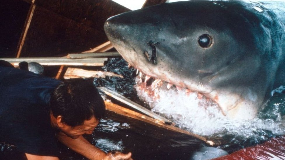 Scene of jaws in which the fictional shark can be seen up-close