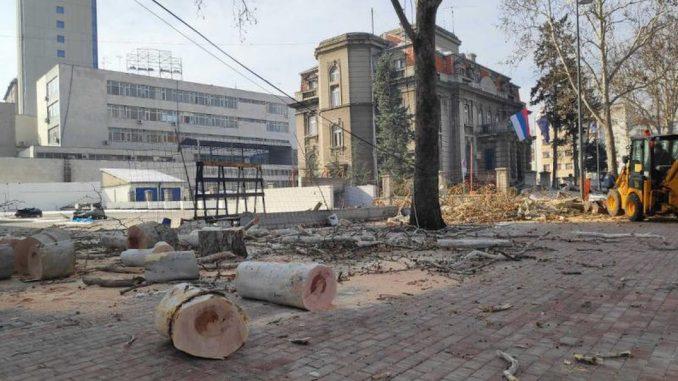 """Životna sredina i Niš: Seča stabala uznemirila stanovnike - """"ljudi su očekivali sadnju, ne ovo"""" 4"""