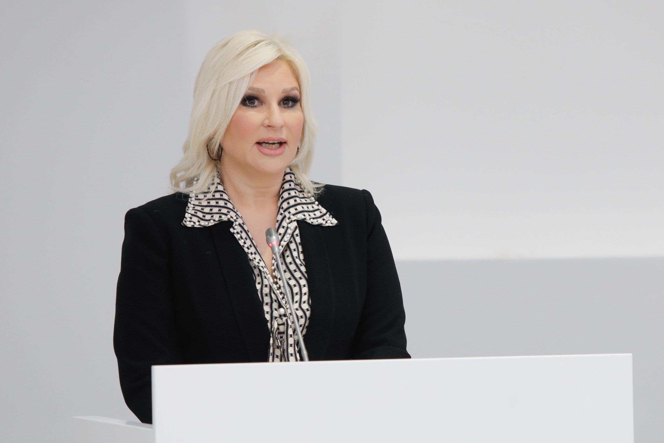 """Mihajlović: Ako može """"spremačica"""", zašto ne bi moglo """"inženjerka"""" 1"""
