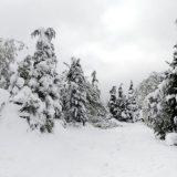 Sneg zavejao Ivanjicu, proglašena vanredna situacija u pet mesnih zajednica 12