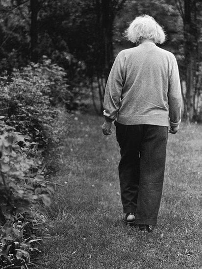 Einstein, walking on a garden.