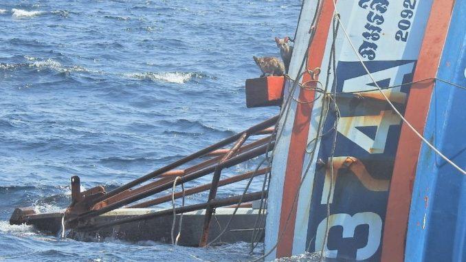 Životinje i Tajland: Mornari spasili četiri mačke sa zapaljenog broda 3