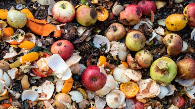 Korona virus i bacanje hrane: Više od 900 miliona tona hrane se baci svake godine 2