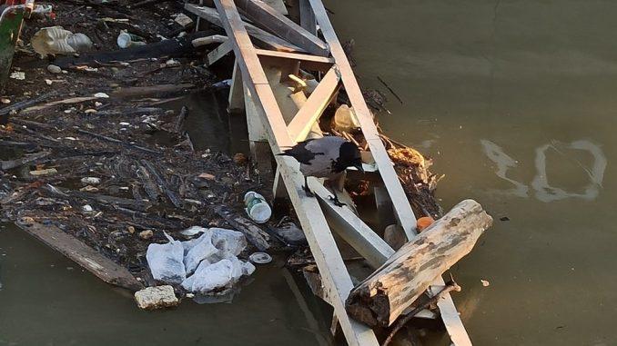Svetski dan vode, Srbija i zagađenje: Zašto po našim rekama plutaju fekalije, flaše i hemikalije 3