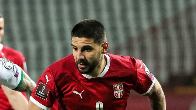 Aleksandar Mitrović: Rođeni pobednik 1