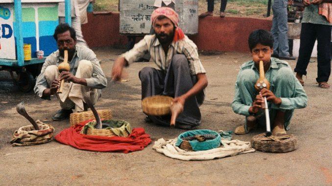 Indija: Ulice Starog Delhija 1
