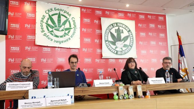 Kanabis koristi više od pola miliona građana Srbije 3