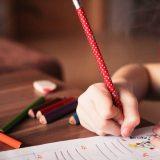 Novi Pazar: U srednjim školama 1.542 slobodna mesta 4