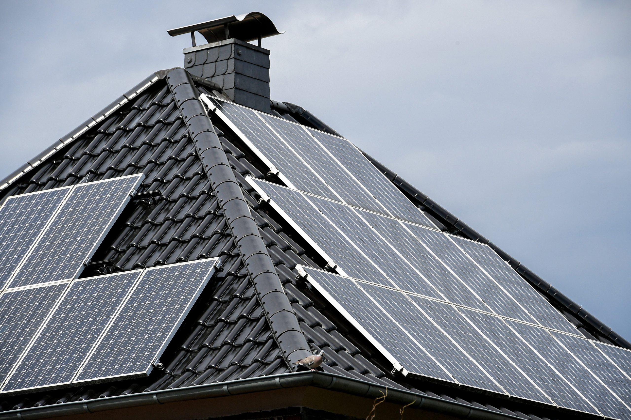 Država računa na 2.555 gigavatsati struje iz solarnih panela 1