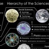 Izmišljeni istraživač ima skoro 200 naučnih radova 13