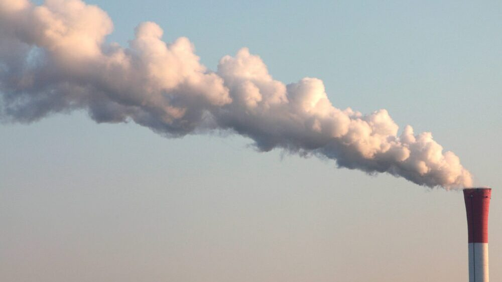 Ekološke organizacije Bora motivišu građane da se više bave zaštitom životne sredine 1