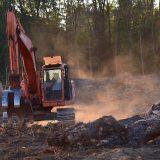 Uzgajanje soje - jedan od vodećih uzročnika deforestacije 12