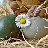 Uskršnja jaja - farbanje u ljubičastom kupusu 7