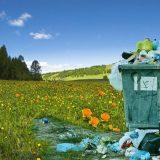 Šta je ključni ekološki problem mesta u kojem živite? (ANKETA) 3