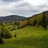 CINS: Sporna izgradnja male hidroelektrane na obroncima Kopaonika 7