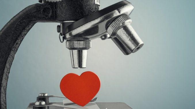 Žene, muškarci i ljubav: Uparivanje preko DNK - može li nauka da nam pomogne u ljubavi 11