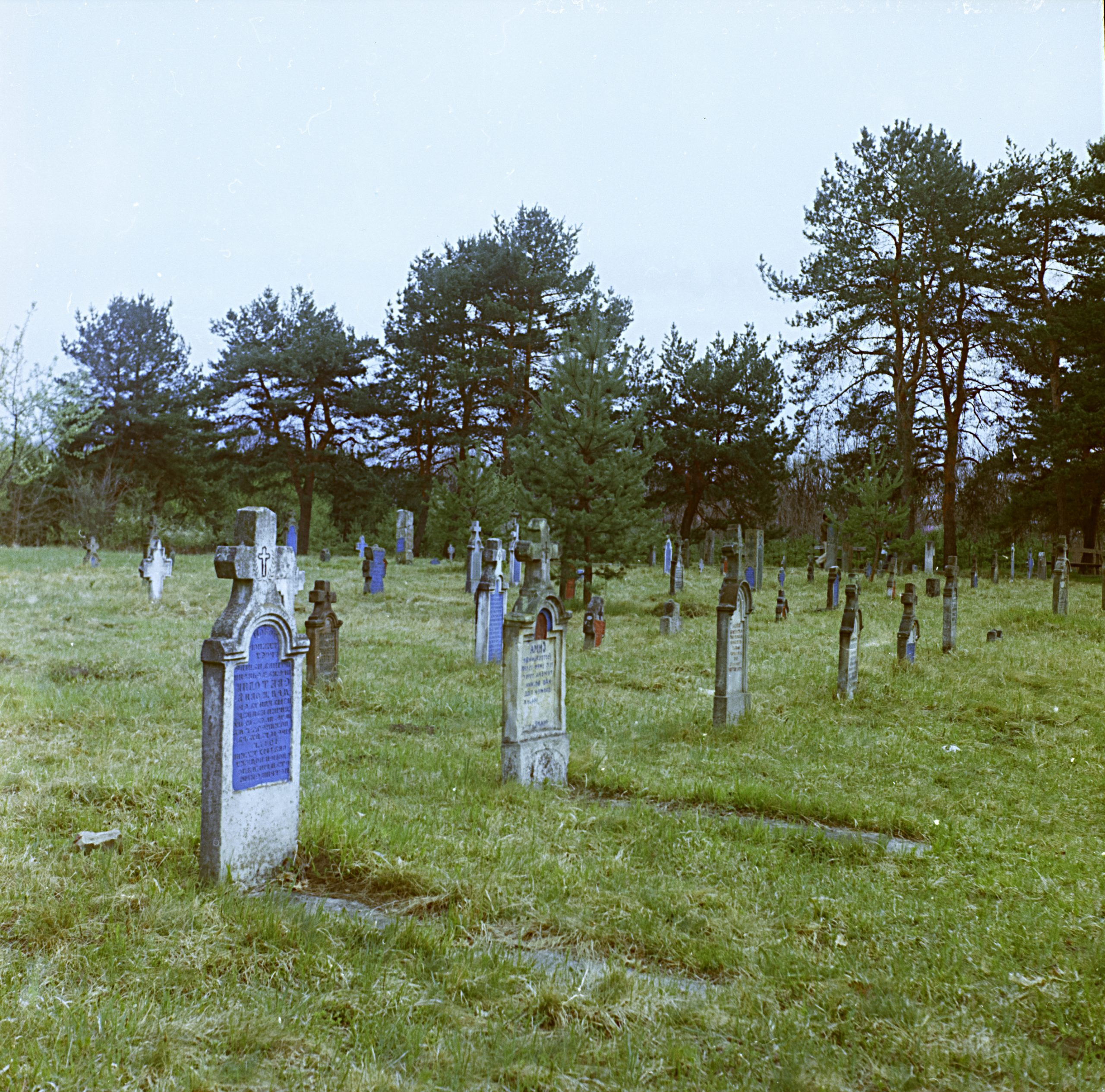Staro vojničko groblje u Šumaricama - najstarije i najveće u Srbiji 2