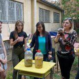 Niški gimnazijalci recikliraju užinu i prave organsku baštu 6