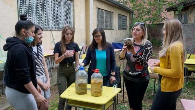 Niški gimnazijalci recikliraju užinu i prave organsku baštu 4
