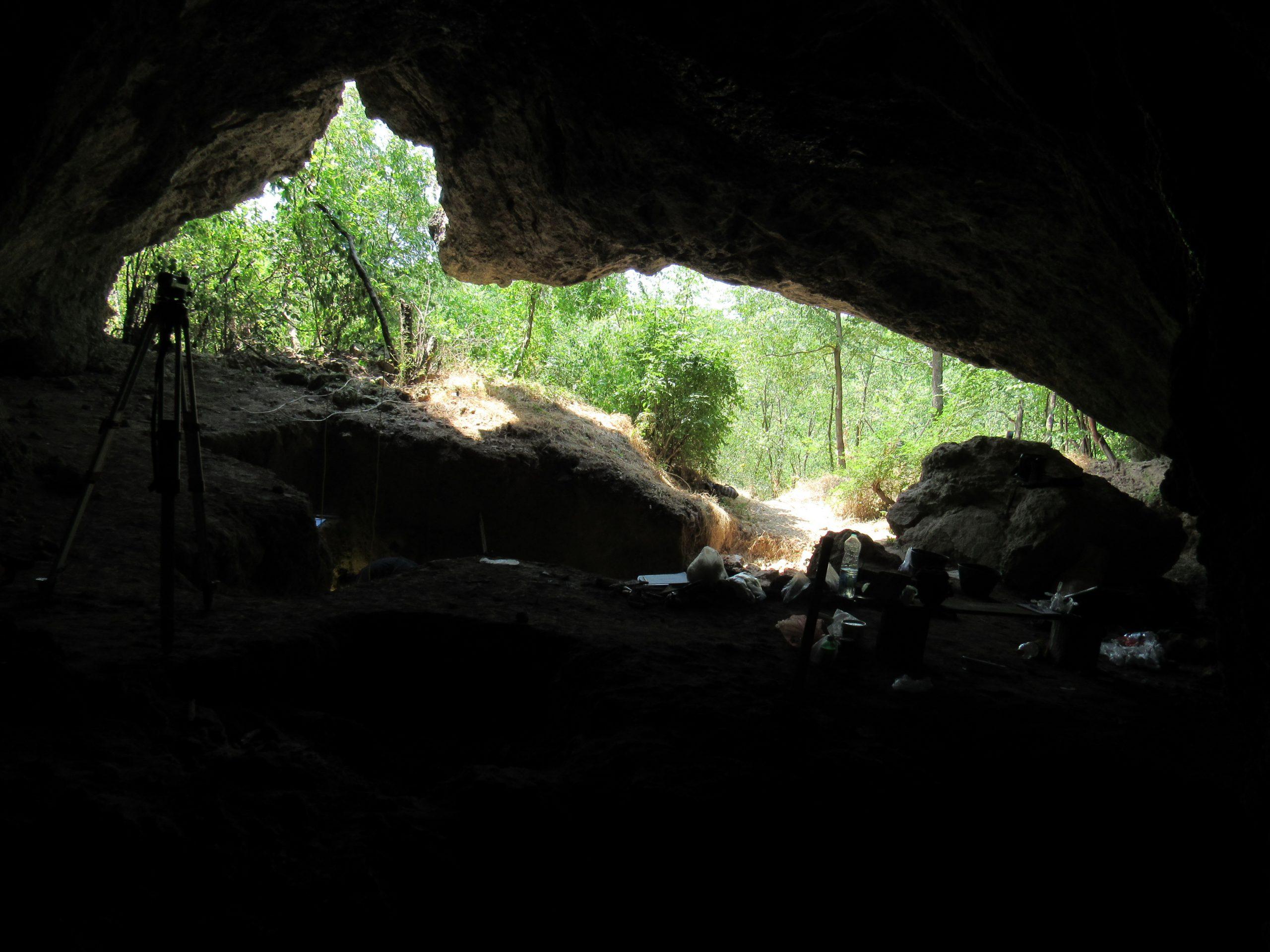Nova saznanja o oralnom mikrobiomu neandertalaca 4