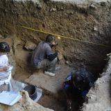 Nova saznanja o oralnom mikrobiomu neandertalaca 2
