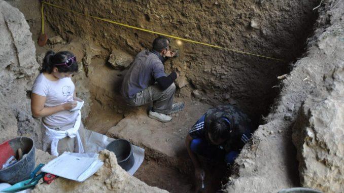 Nova saznanja o oralnom mikrobiomu neandertalaca 3