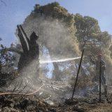 Šef grčkih vatrogasaca: Napredujemo u borbi protiv vatre u nekoliko žarišta 12