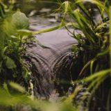 Da li će se u budućnosti ratovati zbog vode? 12