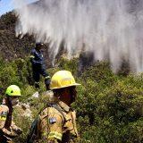 Lokalizovan požar kod Antalije, troje poginulo, više od 50 hospitalizovano 4