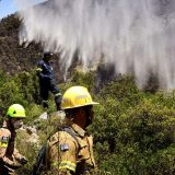 Požar u Grčkoj: Za sada 55 kvadratnih kilometara pepela 13