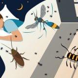 Korona virus i zdravlje: Kako pandemija utiče na vaše snove 12