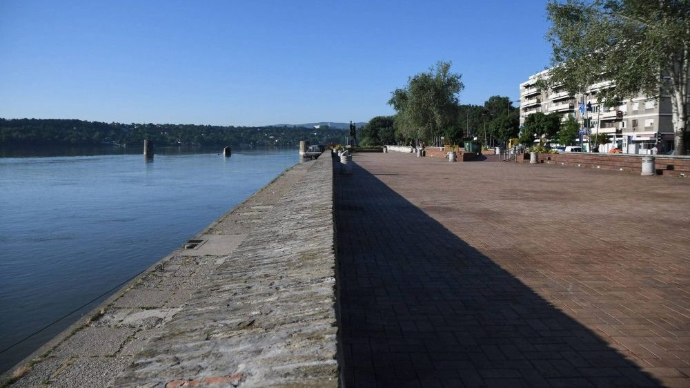 "NVO ""Svet i Dunav"" posle ustavne žalbe podnela i ustavnu inicijativu 1"