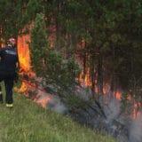 Požar zahvatio 50 hektara nacionalnog parka Prokletije na Kosovu 10