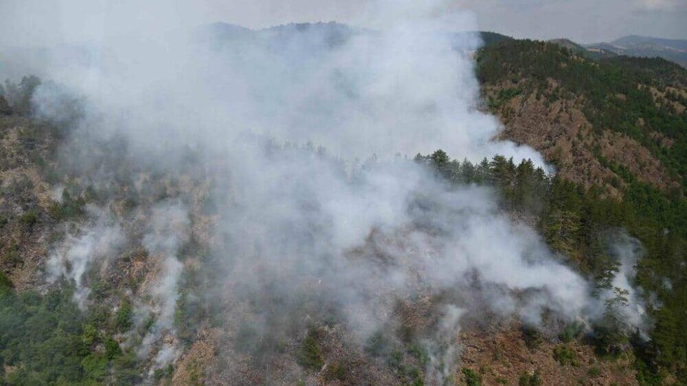 U Novom Selu se muškarac ugušio zbog požara 1