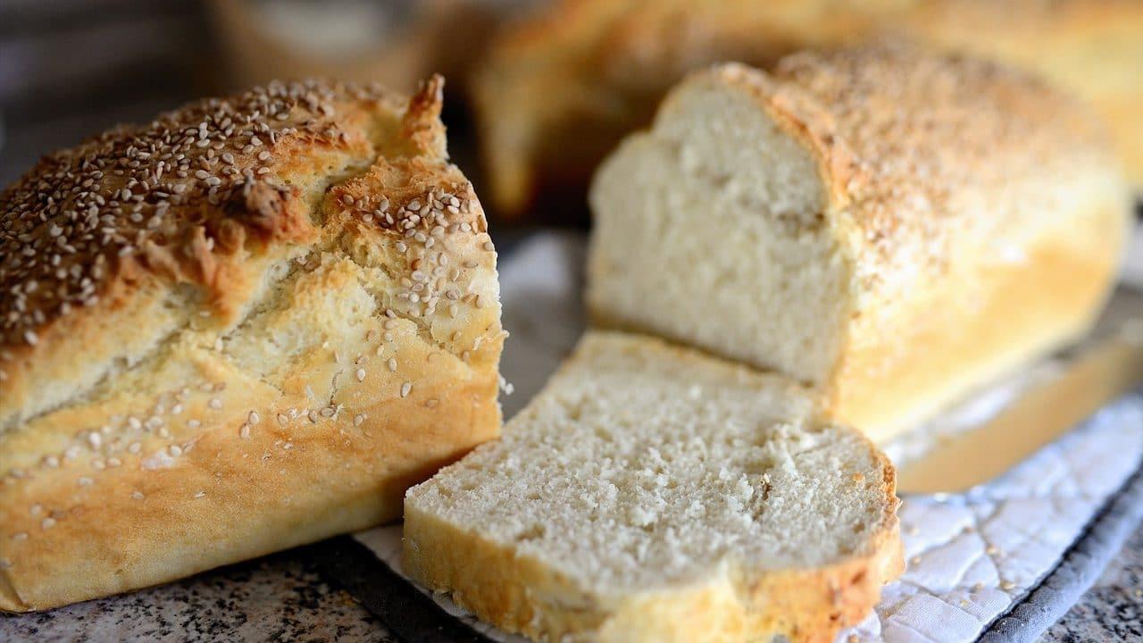 Nema razloga da hleb poskupi 1