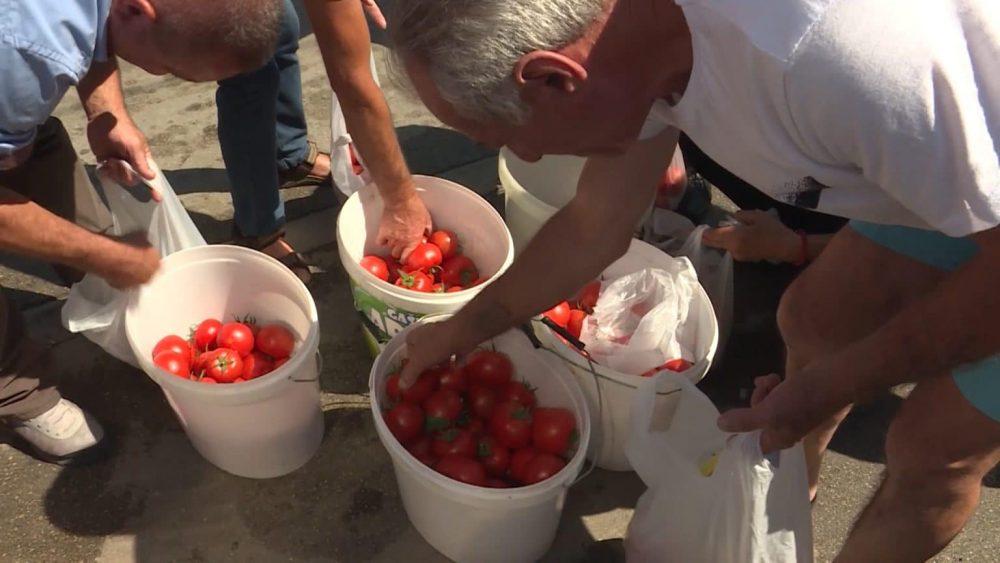Protest poljoprivrednika u Leskovcu, delili građanima paradajz 1