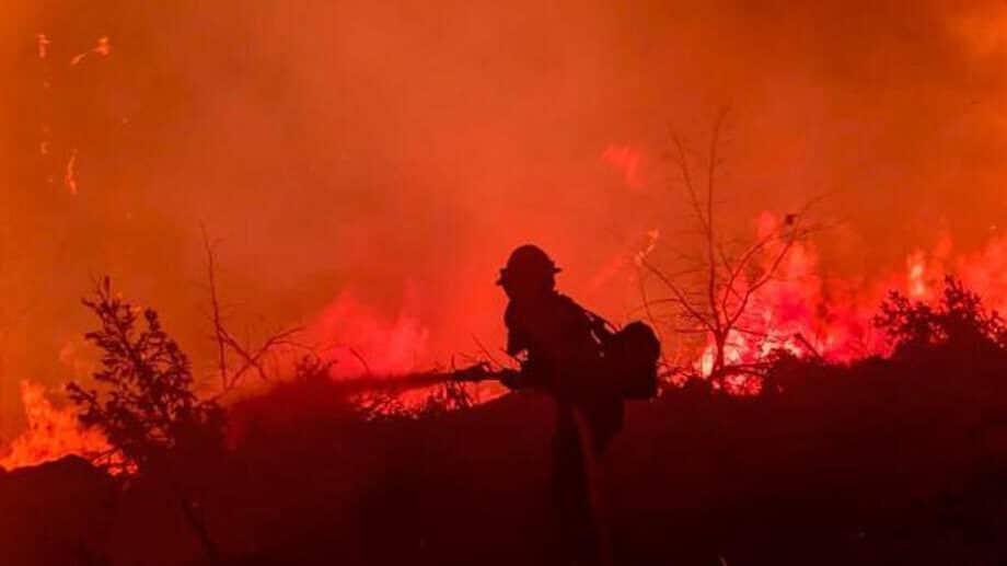 Vrućine na vrhuncu u Italiji, vatrogasci se bore s više od 500 požara 1