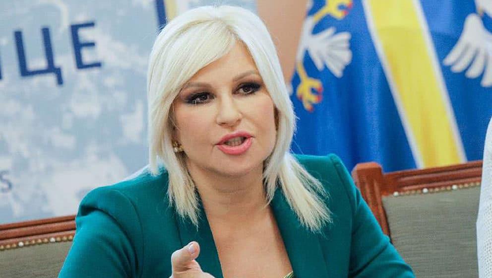 Mihajlović: Opozicija ima šizofrene stavove o Kosovu 1