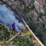 Srbija, priroda i požari: Zašto dolazi do šumskih požara 10