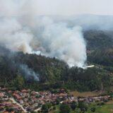 Ugašena četiri požara u Pčinjskom okrugu, šume oko Bosilegrada i dalje gore 19