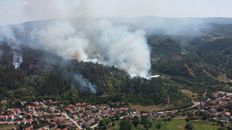 Ugašena četiri požara u Pčinjskom okrugu, šume oko Bosilegrada i dalje gore 13