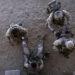 """Povlačenje SAD iz Avganistana i Iraka: Gorki bilans """"beskrajnih ratova"""" 8"""